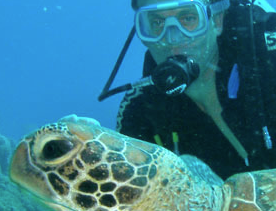 David_Wood_Scuba_Diving_with_Turtle_Square